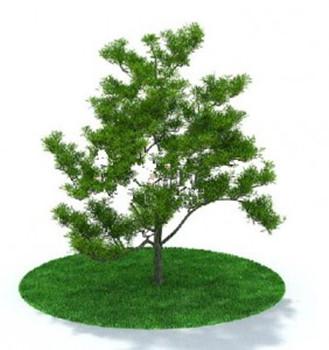 Mod les d 39 arbres modernes 3d model download free 3d for Plante 3d gratuit