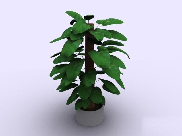 Plantes 004 37 3d model download free 3d models download for Plante 3d gratuit