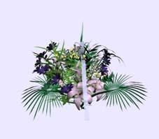 Plants 002 104 3d model download free 3d models download for Plante 3d gratuit